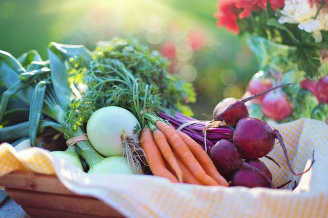 a basket of fruits and vegetables for a healthy brain